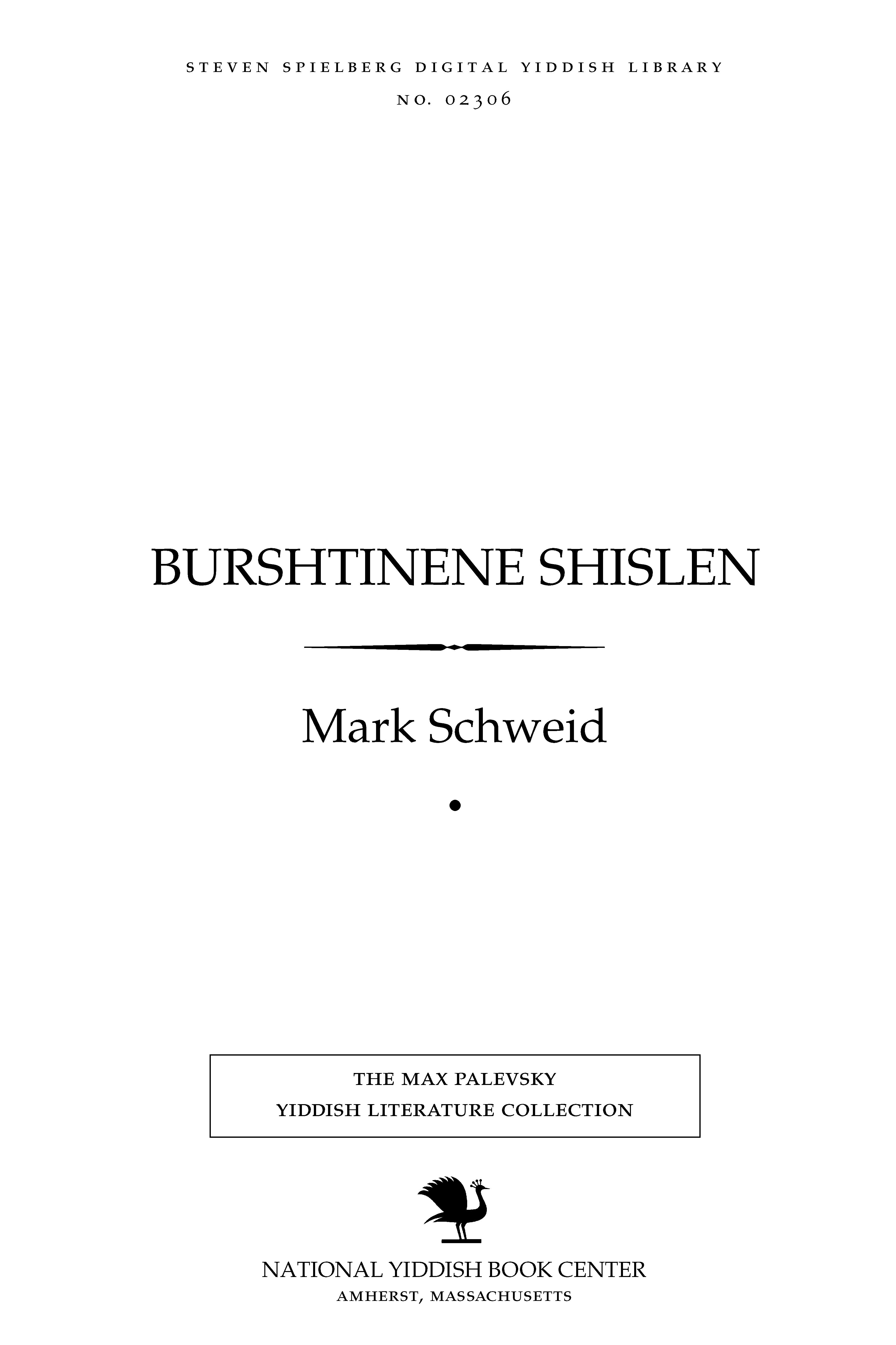 Cover of: Burshṭinene shislen